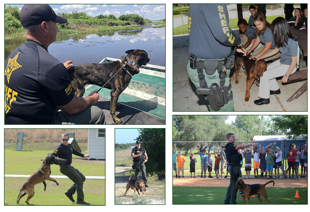 Five images of K9 units at work